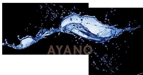 Ayano Senioren Service